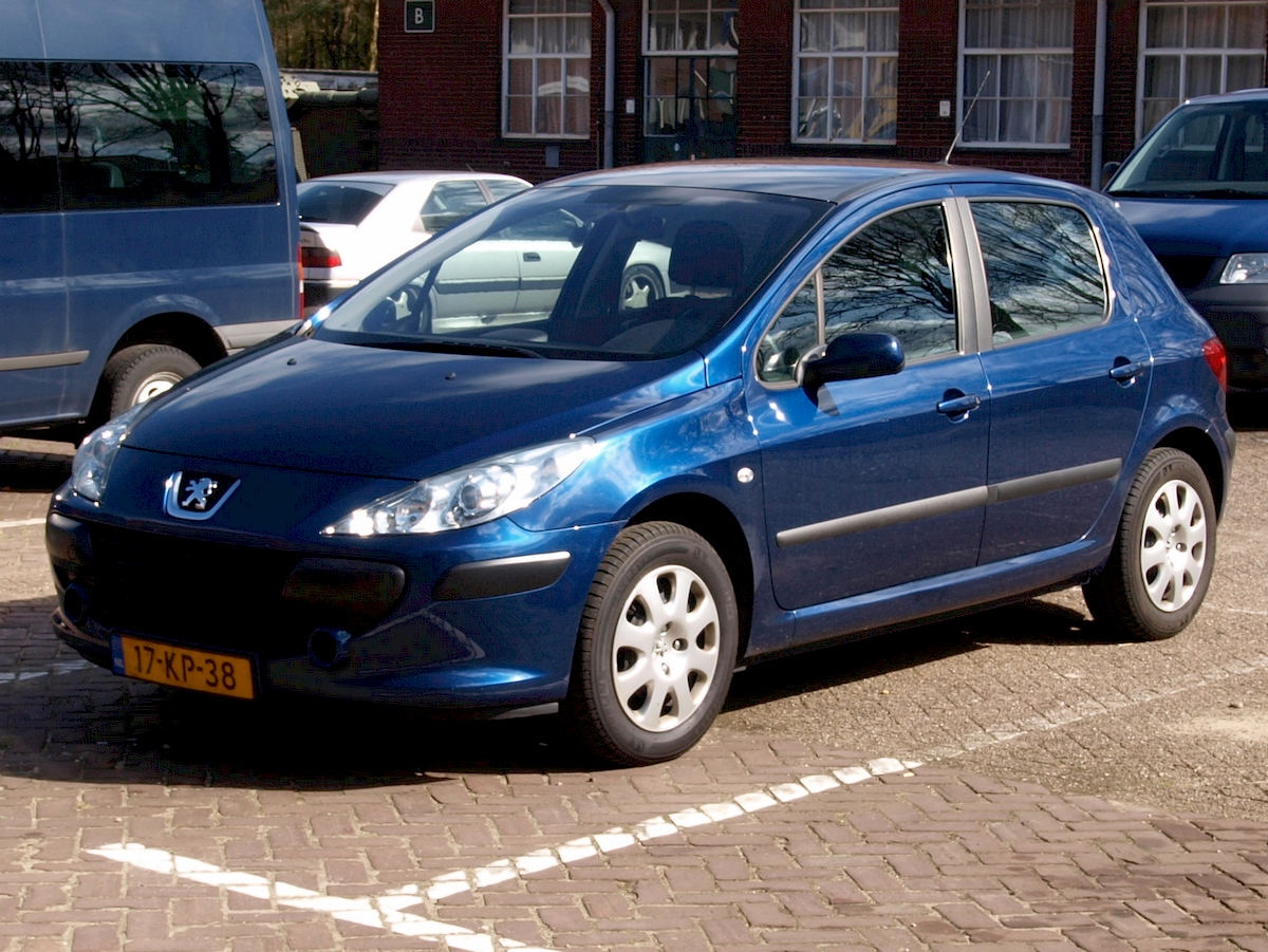 Image of PEUGEOT 307